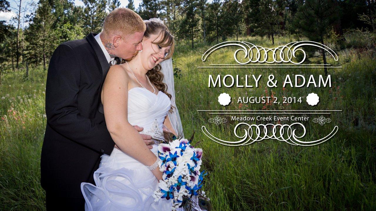 Molly and Adam Wedding Highlights