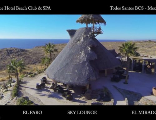 Guaycura Boutique Hotel Beach Club and Spa